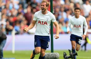 Noble: Kane worth more than £100m