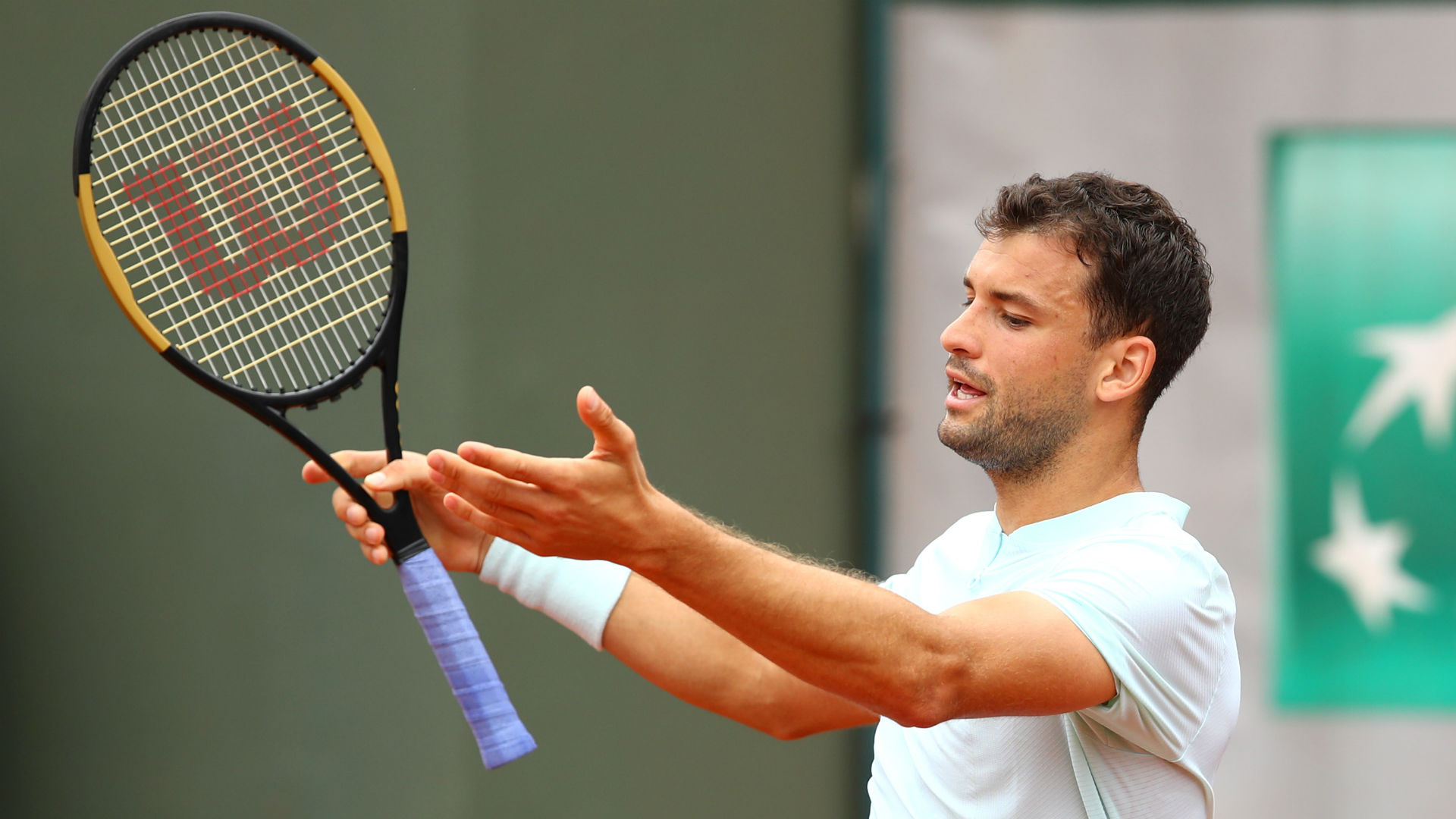 Fernando Verdasco downs Grigor Dimitrov in straight sets at French Open