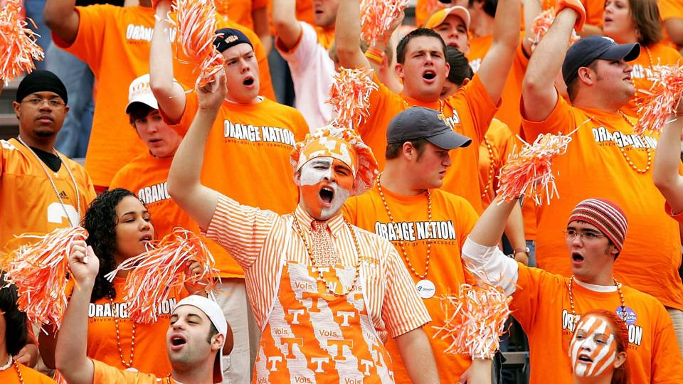 Image result for tennessee football fans