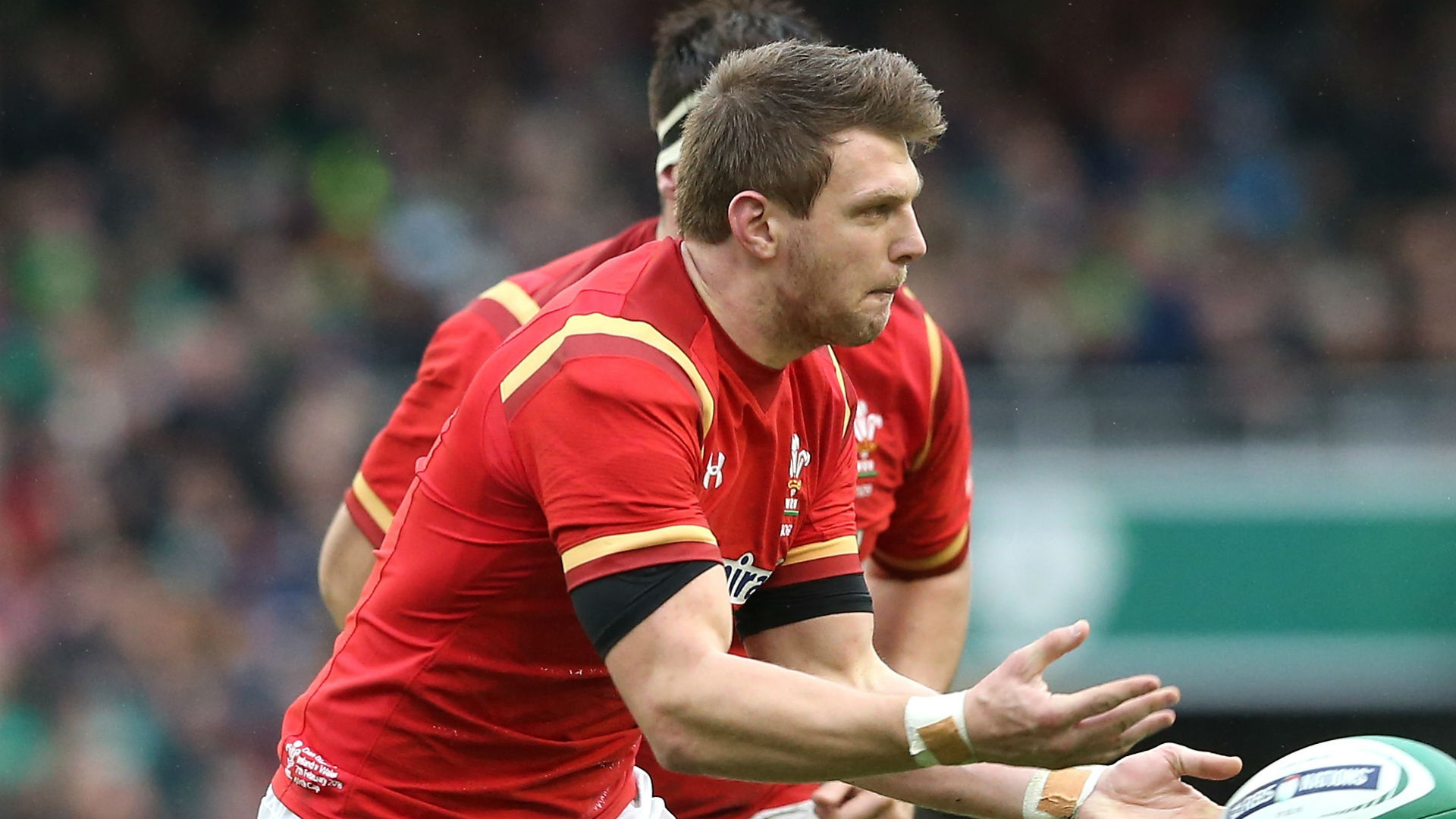 Gatland: We'll target Sexton and Murray