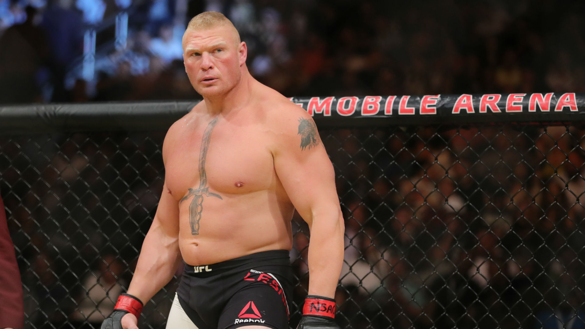 Brock Lesnar vs. Daniel Cormier Early Betting Odds Released