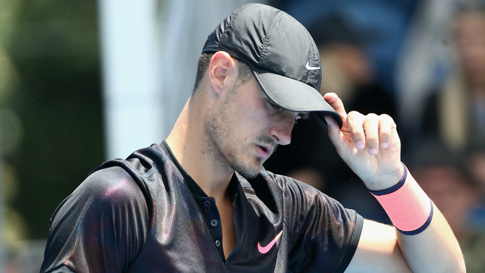Bernard Tomic: all I do is count my millions