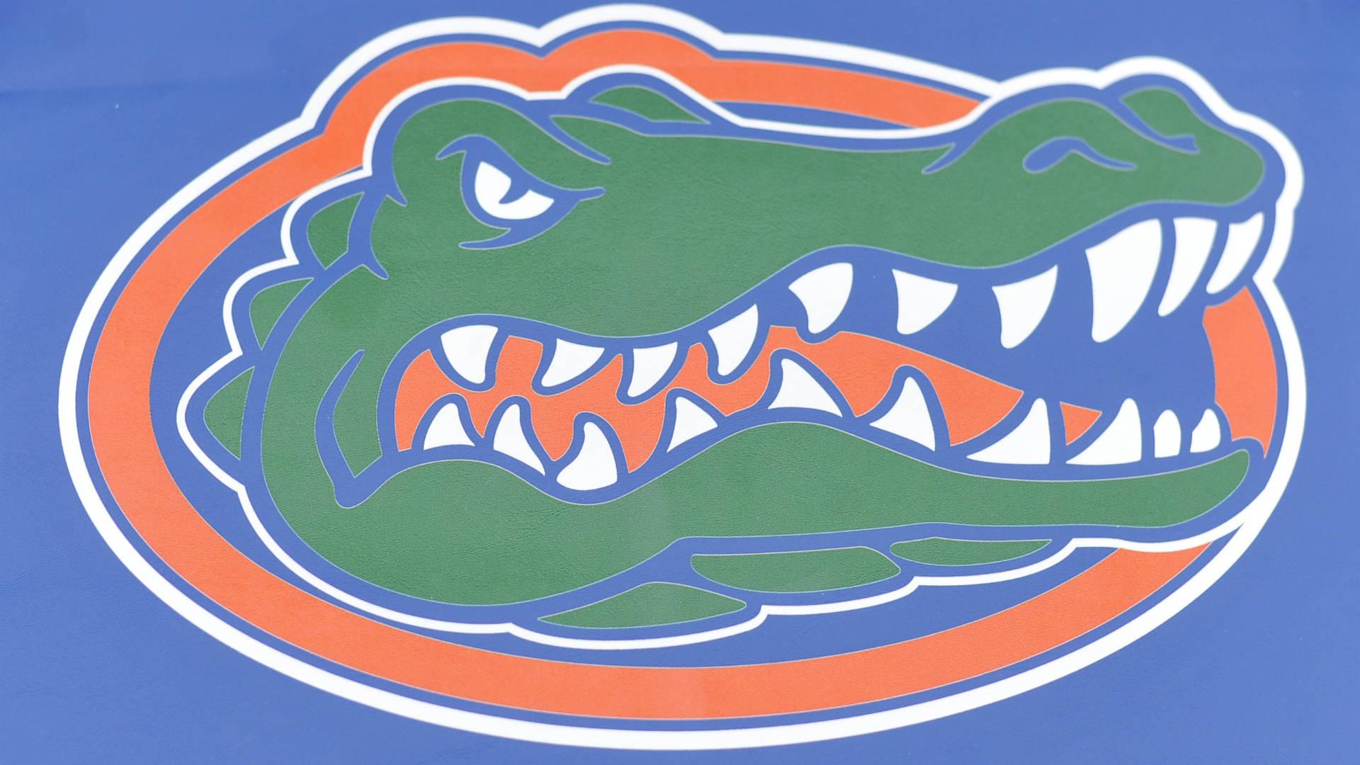 Florida-gators-020518-usnews-getty-ftr_12otamxmgcooo1tme60g5gemol