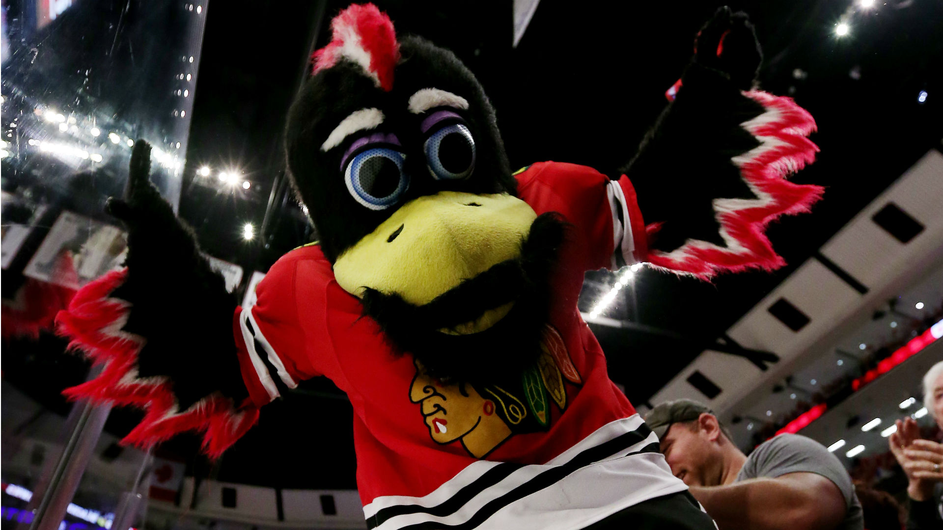 NHL's Blackhawks probe mascot's fan fight