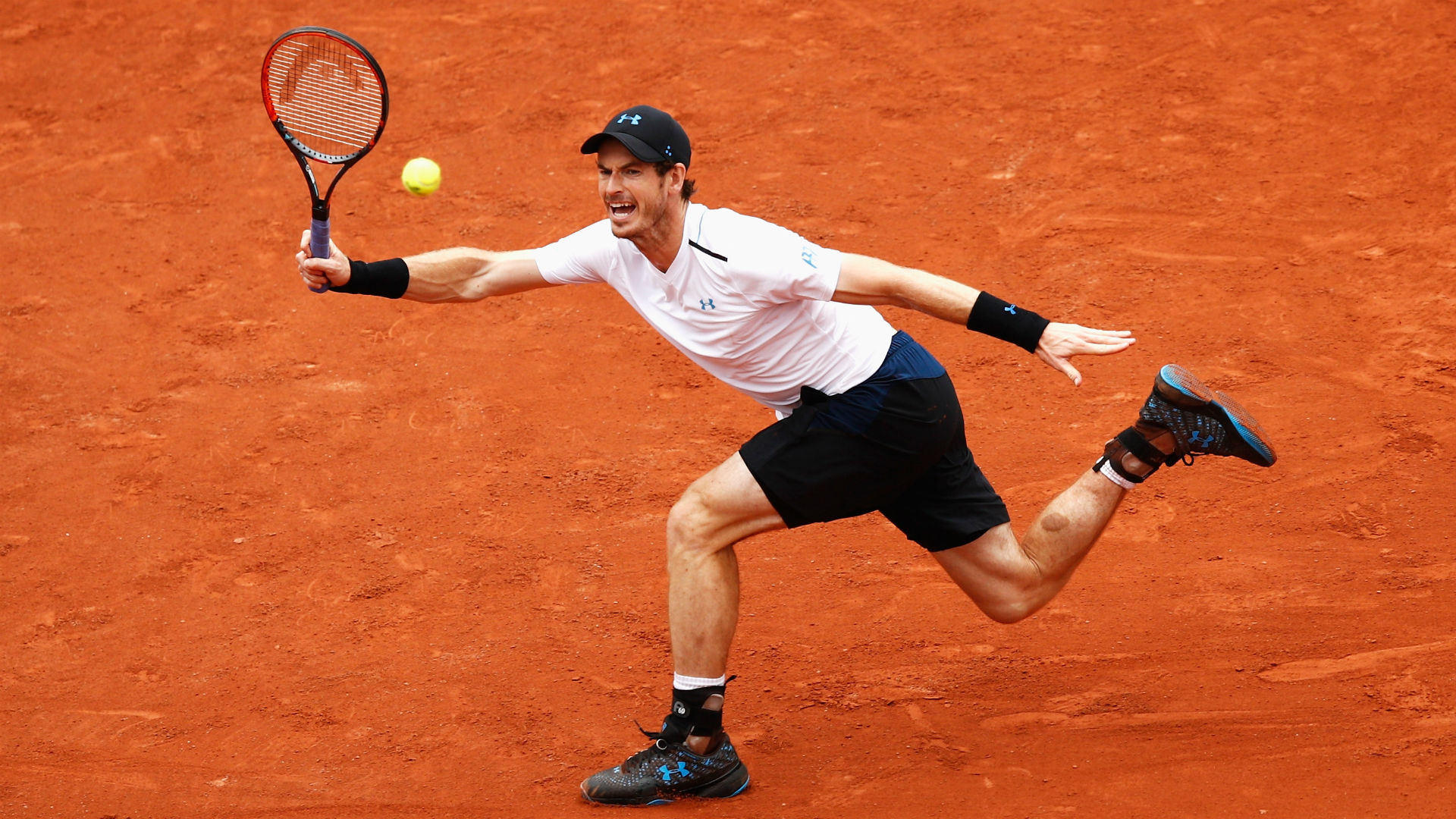 Andy Murray- cropped