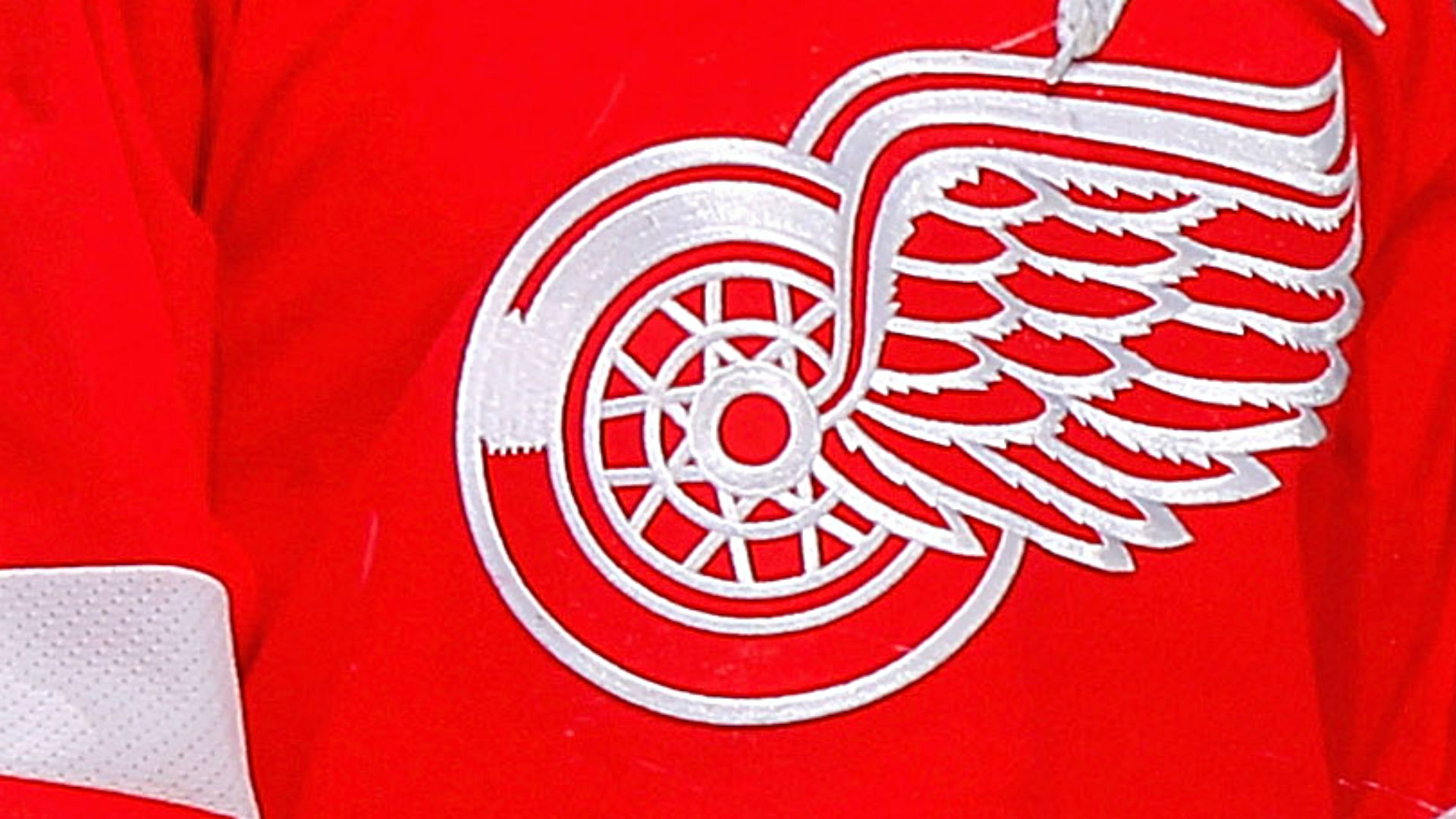 NHL Red Wings Considering Legal Action After Team Logo Used At White Nationalist Rally