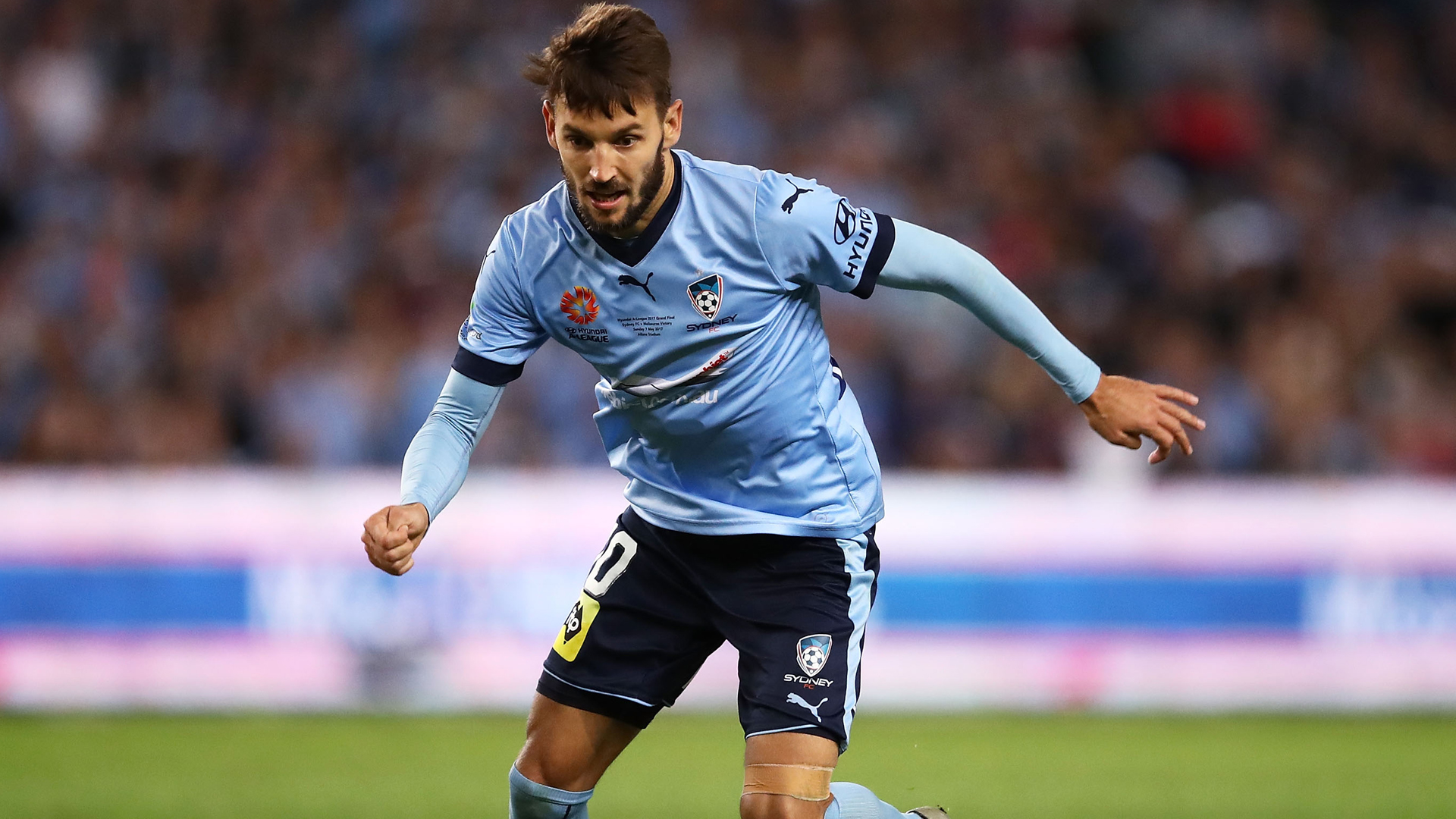 Ninkovic signs new Sydney FC marquee deal