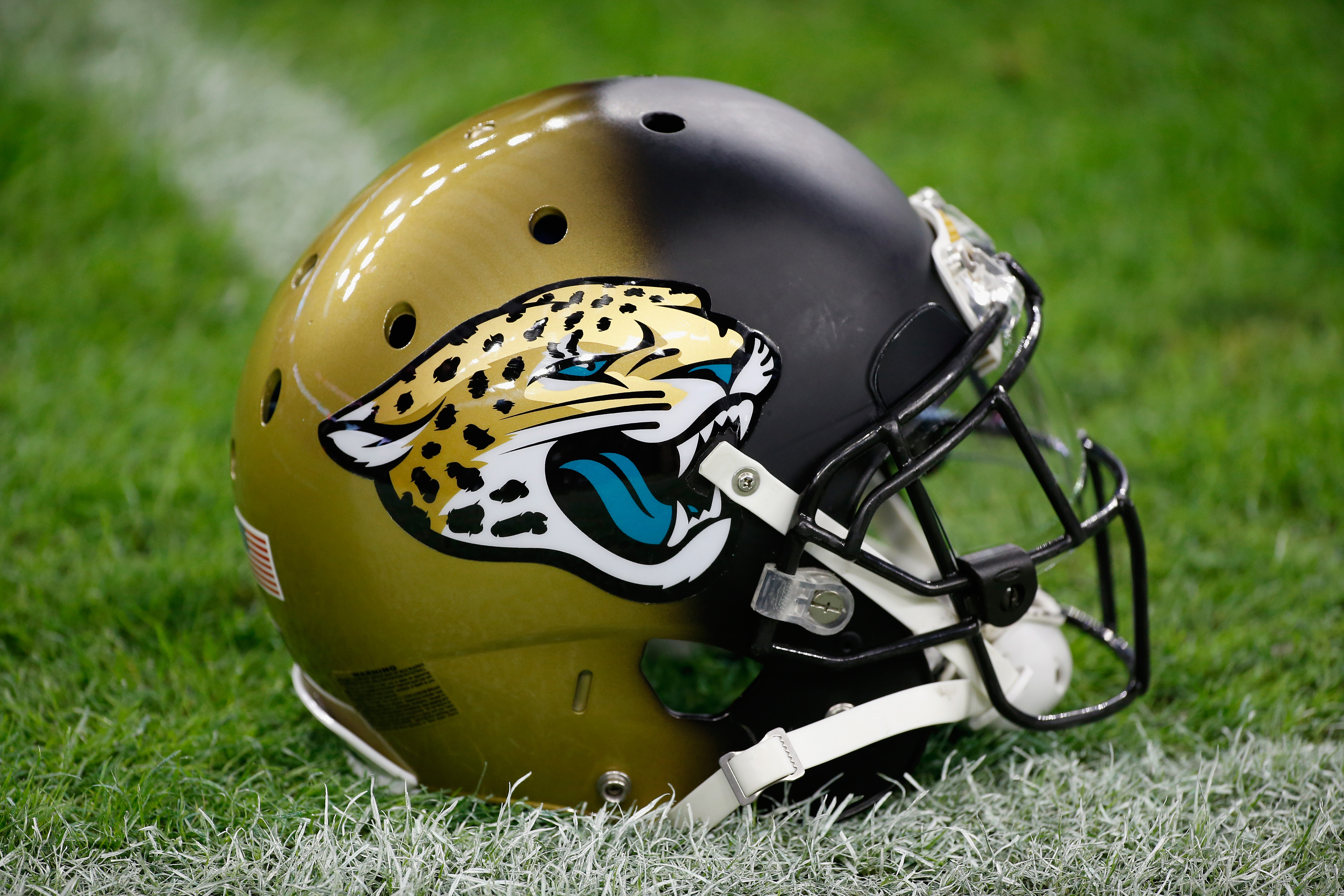 Charming Jaguars Continue Renovations, Officially Change Stadium Name   NFL    Sporting News