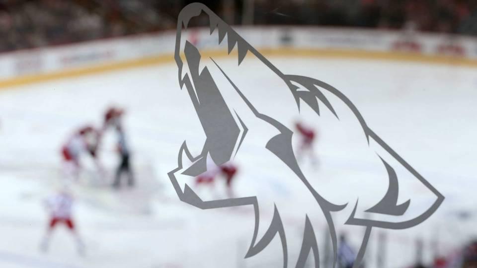 Arizona-Coyotes-082416-USNews-Getty-FTR