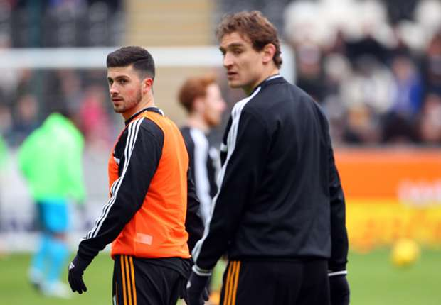 Shane Long excited by Jelavic partnership