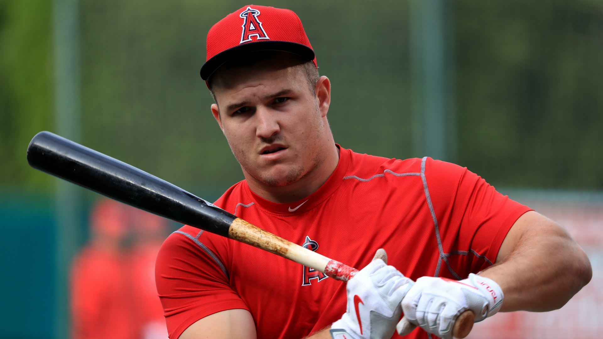 Miketrout Cropped