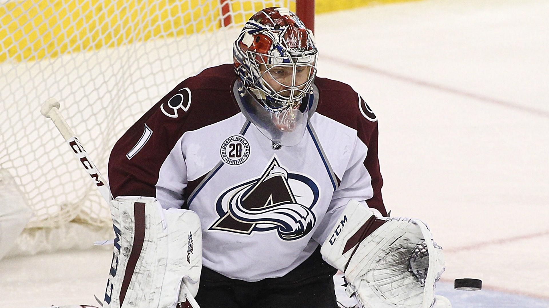 Arrest and indictment of Semen Varlamov 48