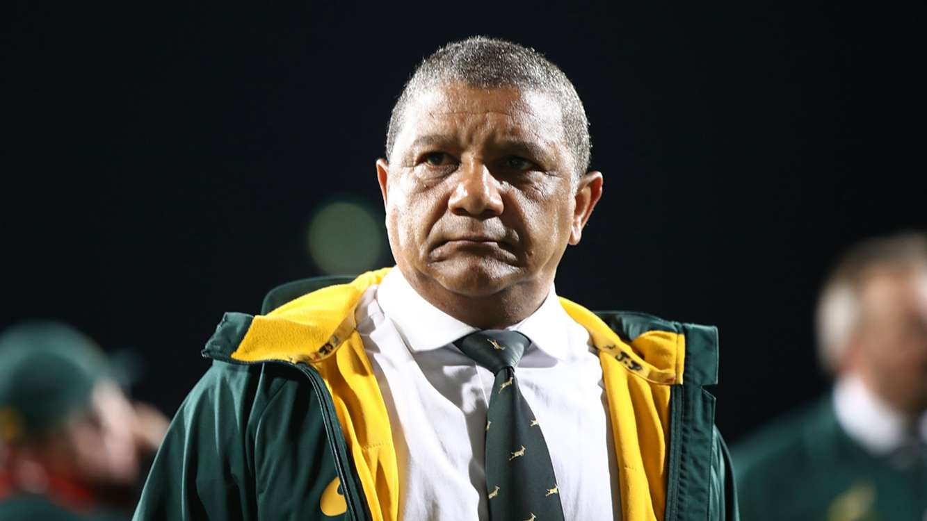 Springboks are heading in the right direction, insists Coetzee
