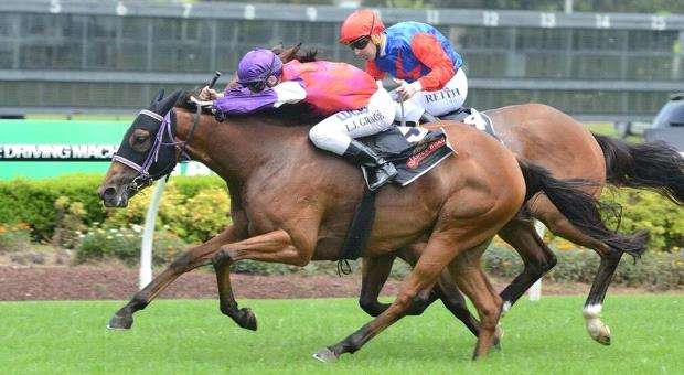 Sydney apprentice chasing a maiden black-type win