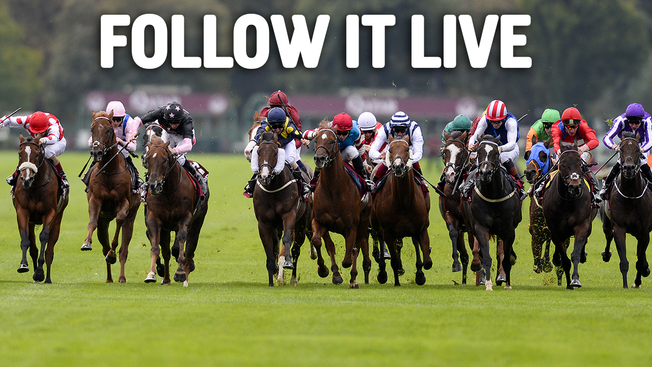 16:9. Horse Racing. Live Coverage