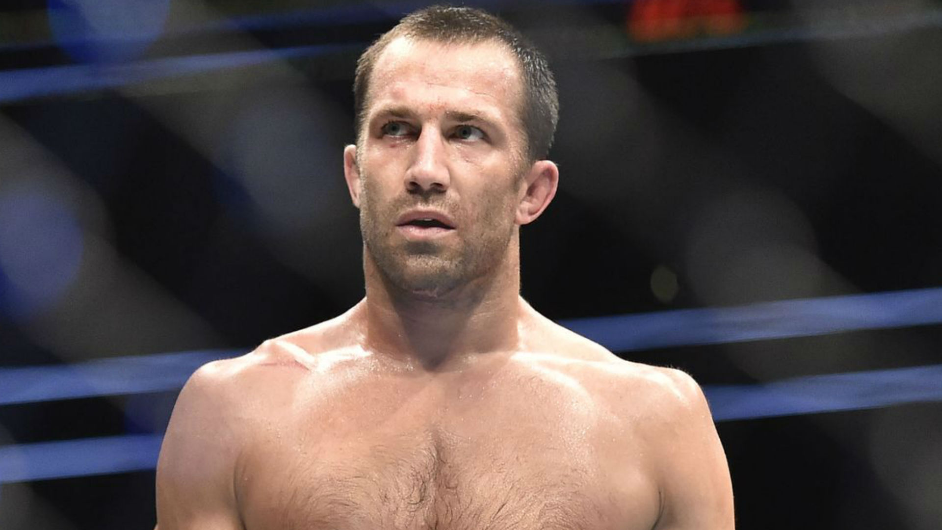Guys Like me Would Feast on Georges St-Pierre — Luke Rockhold