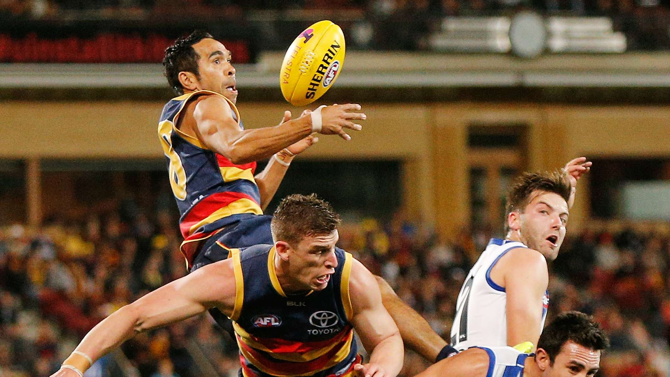 Edbetts Extends Adelaide Crows Contract For Three More Years