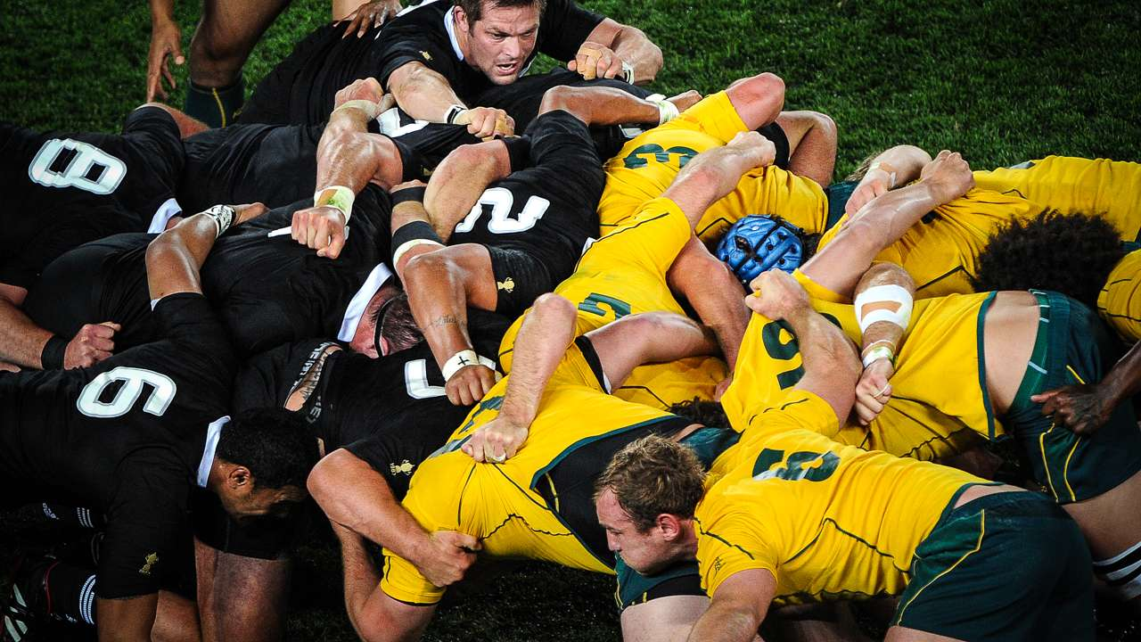 Wallabies ready to scrumble with All Blacks