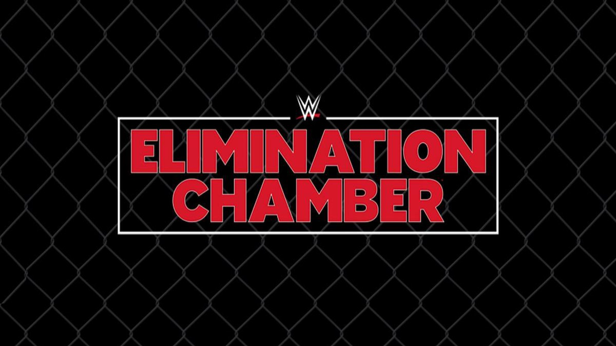 WWE Elimination Chamber 2019 results: Daniel Bryan, Ronda Rousey remain champions, Sasha Banks and Bayley win tag titles