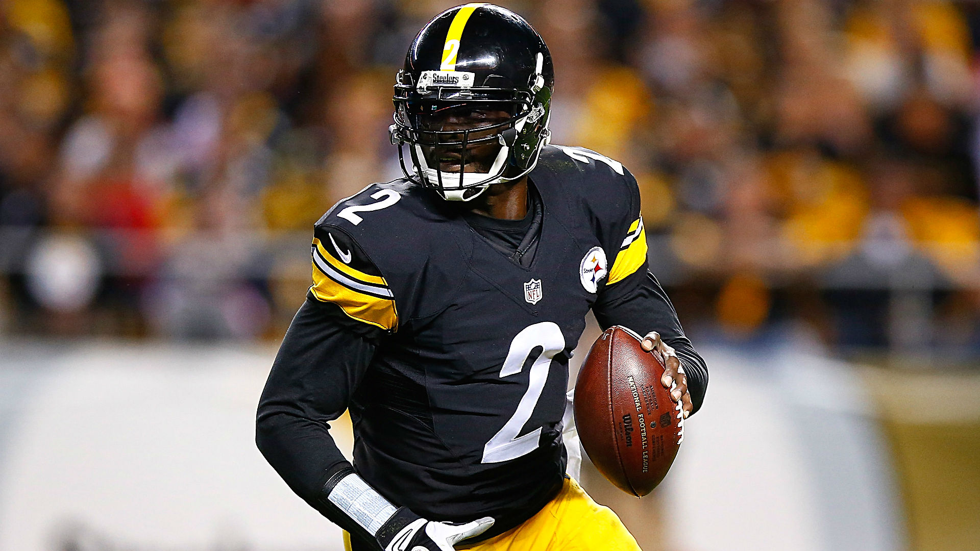 Mike vick article