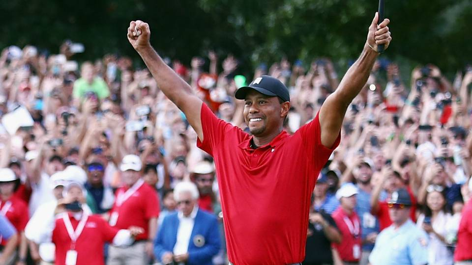 Image result for tiger woods win