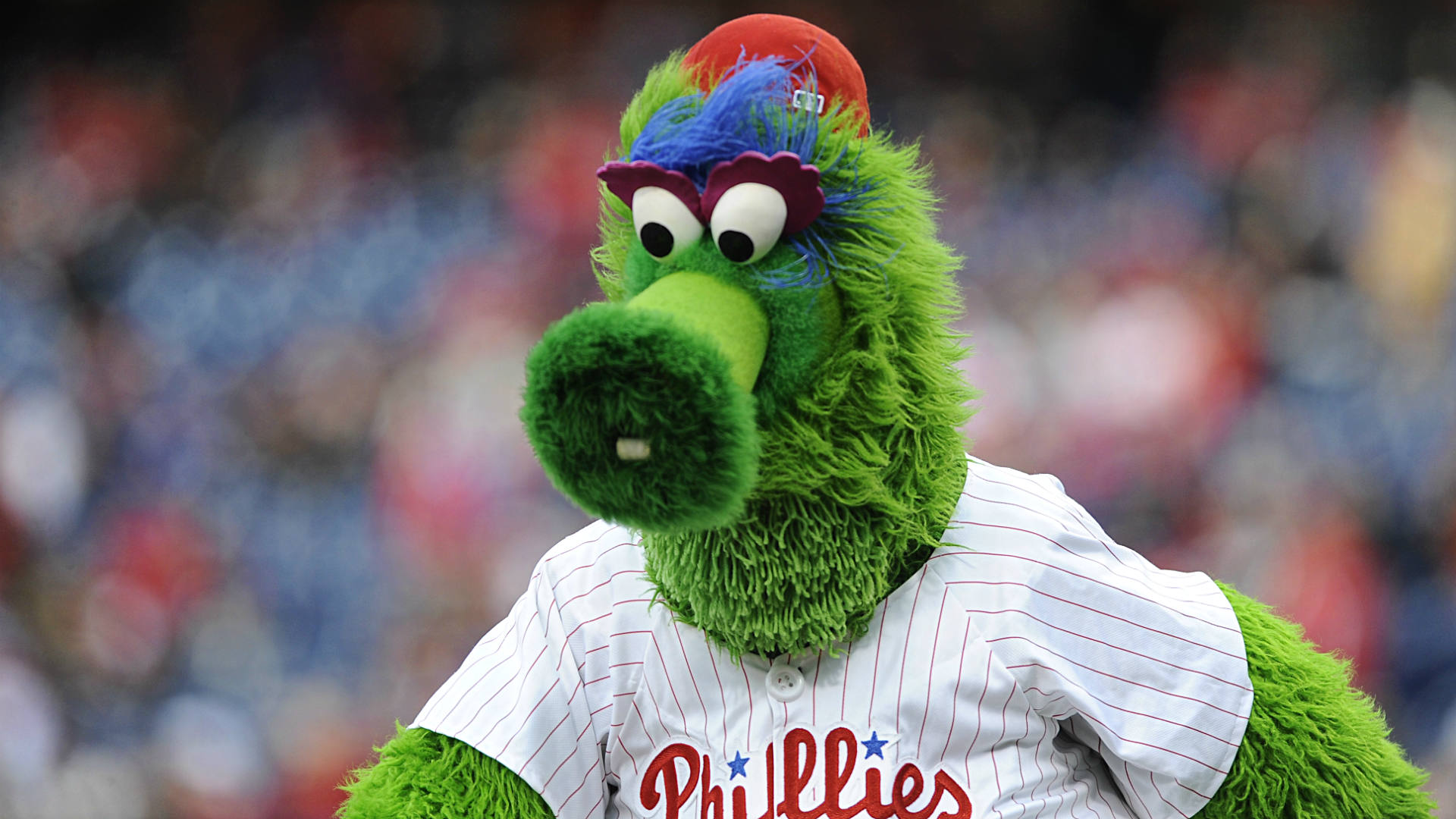 Phillie-Phanatic-FTR-122313.jpg