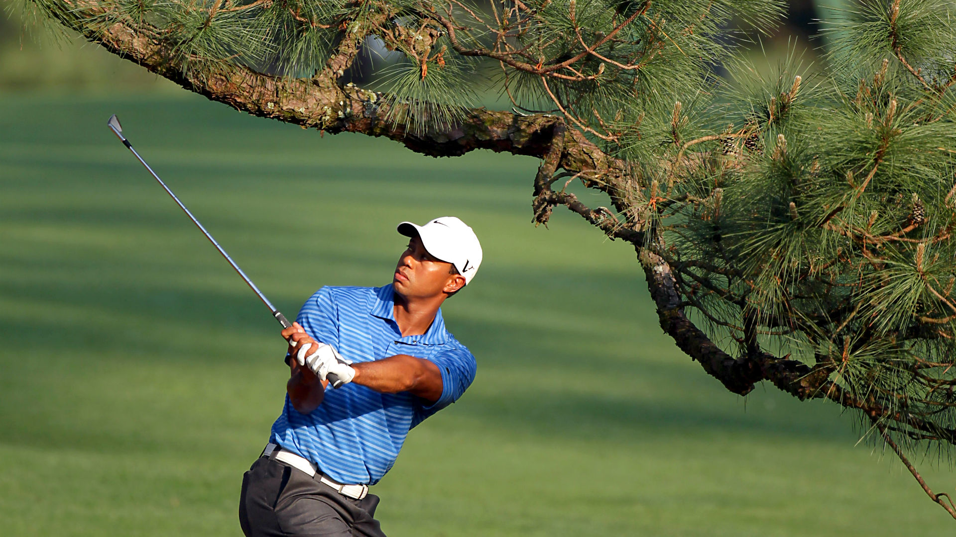 woods-tiger-tree040815-getty-ftr.jpg