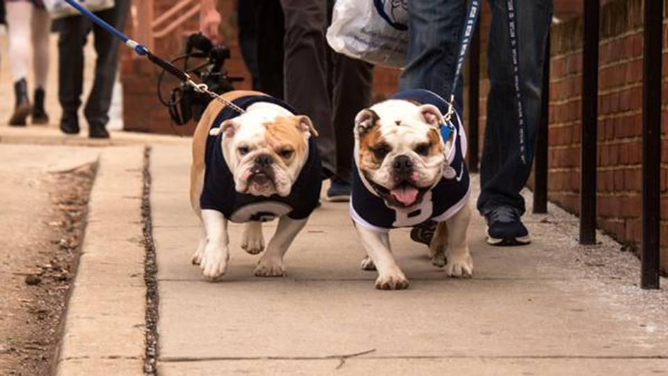 georgetown-butler-bulldogs-011515-twitter-ftr
