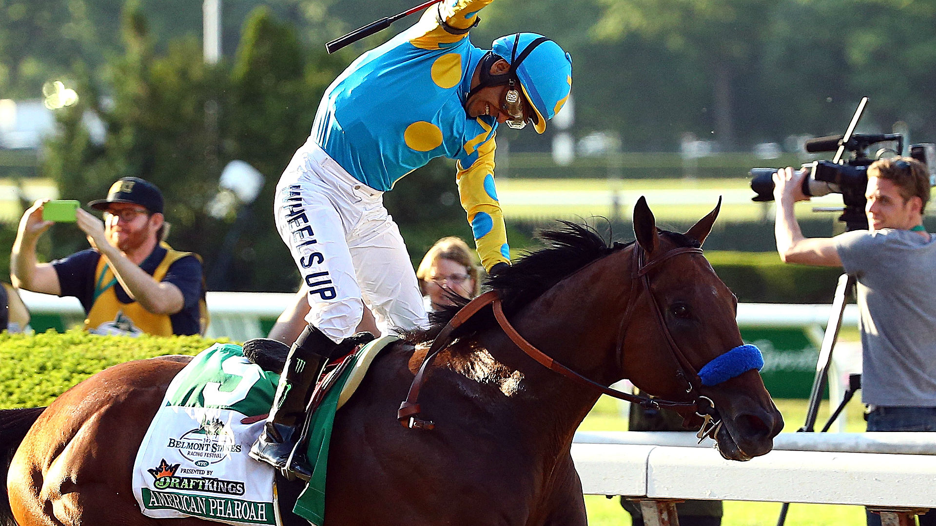 Haskell odds and post positions – American Pharoah installed as overwhelming favorite