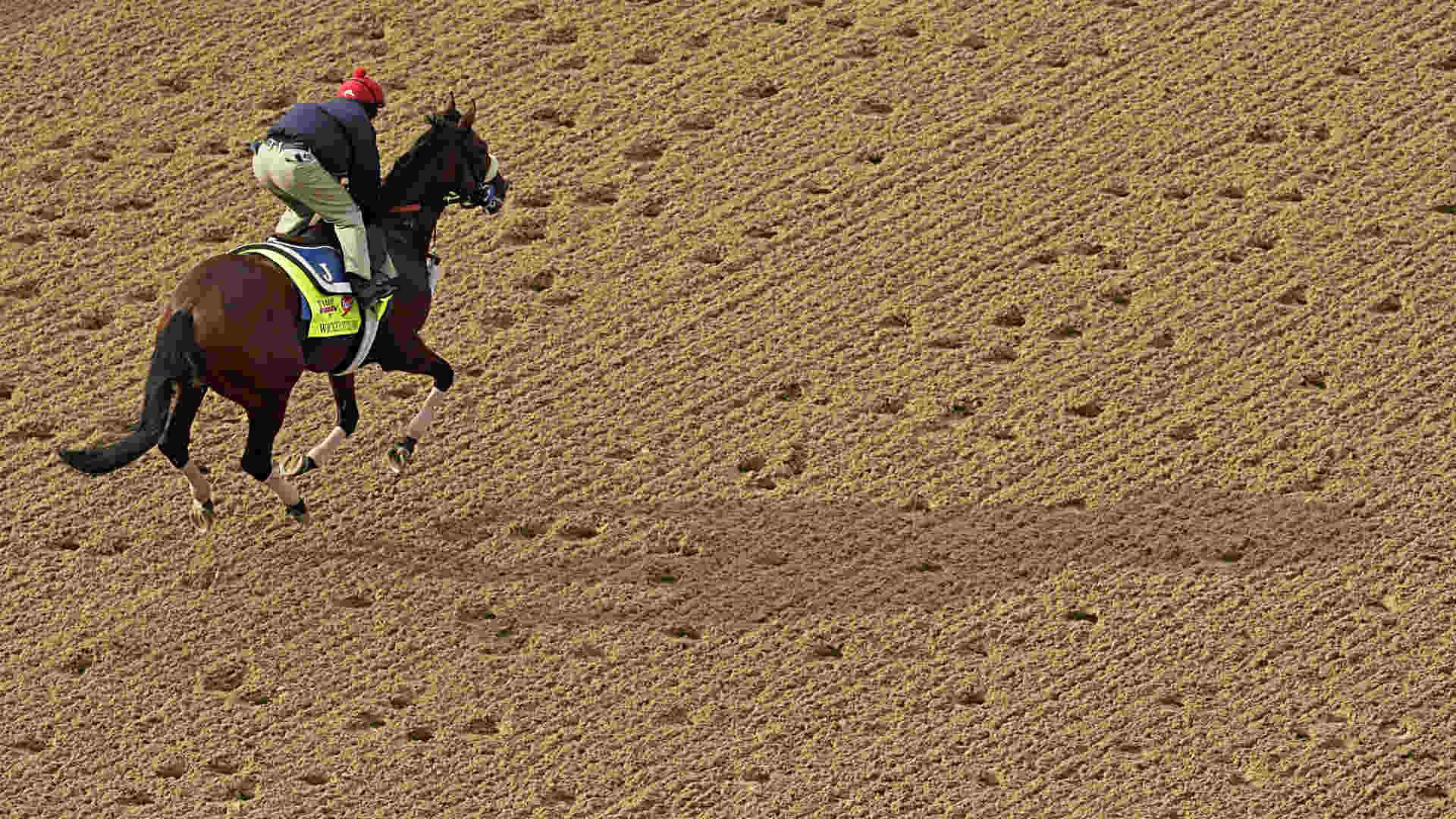 Kentucky-Derby-Wicked-Strong-042914-FTR-AP