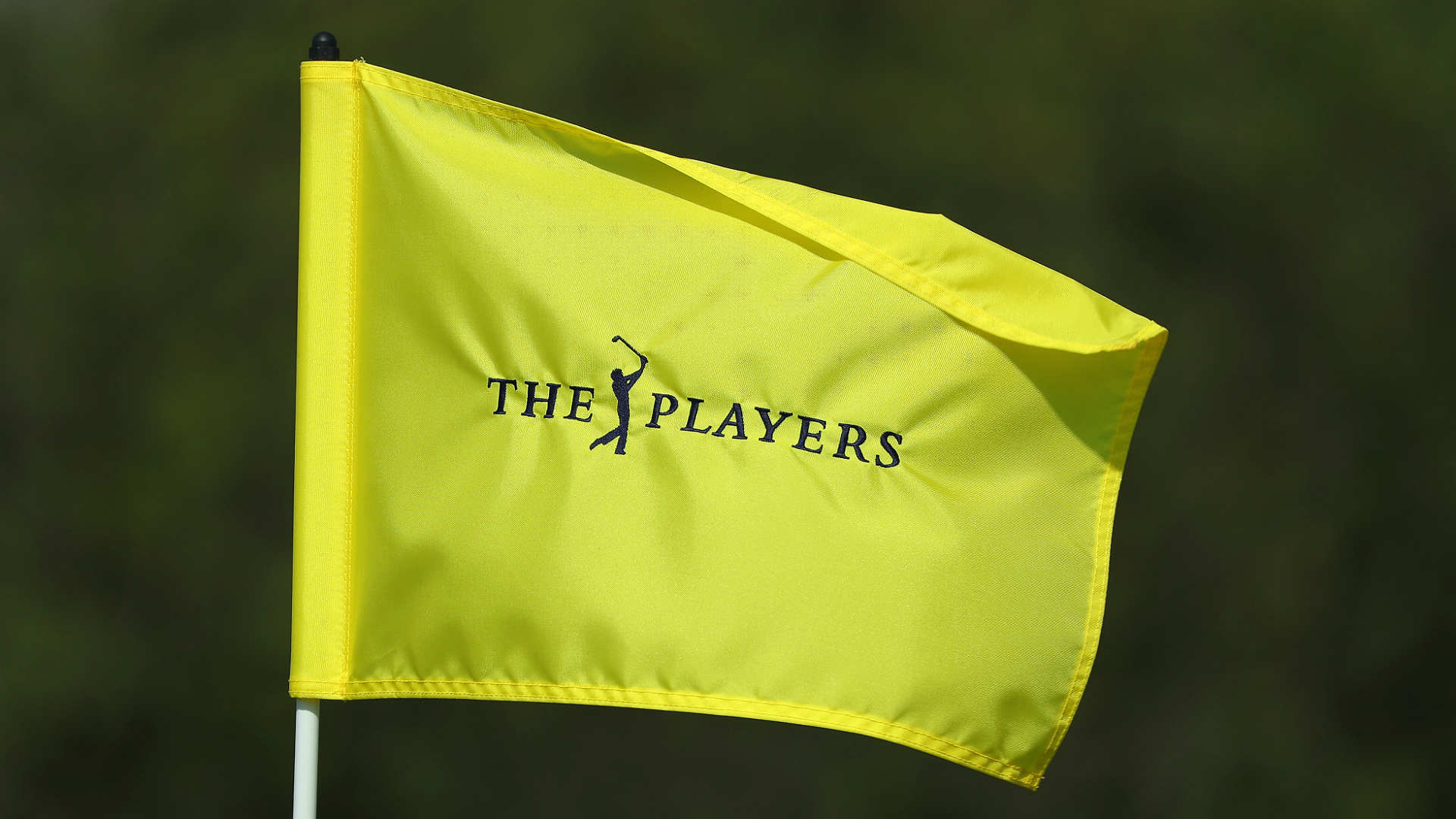 the players championship leaderboard 2018  live scores
