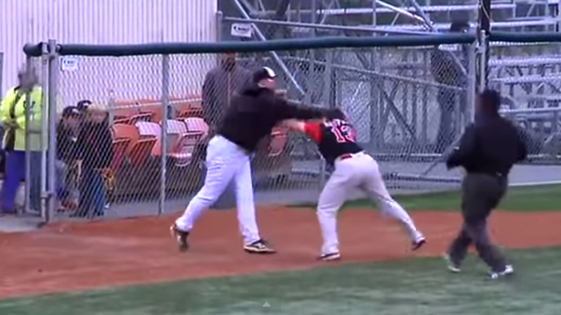 baseball game fight