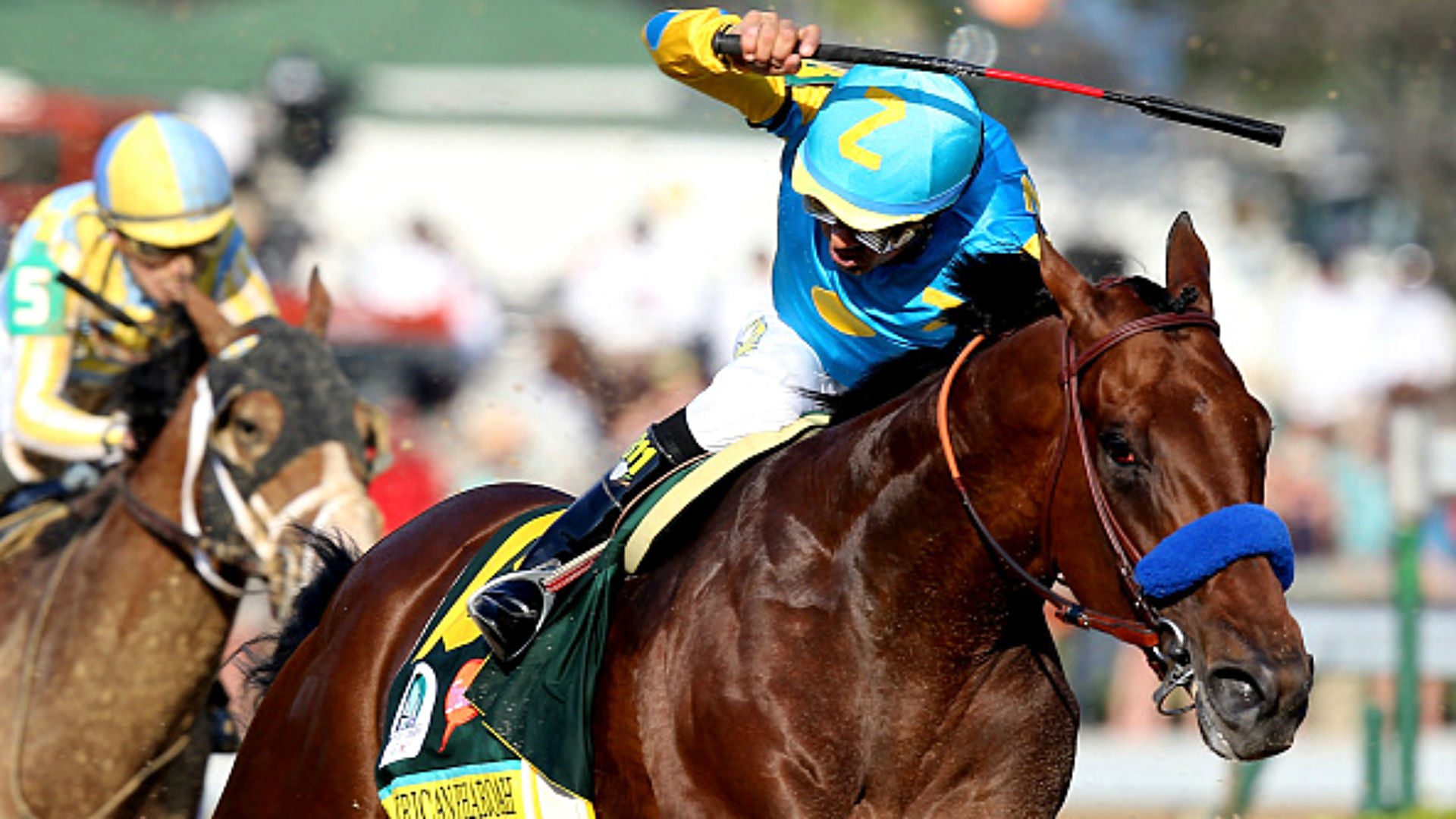 Haskell odds, props and betting analysis — How to wager around American Pharoah's huge price