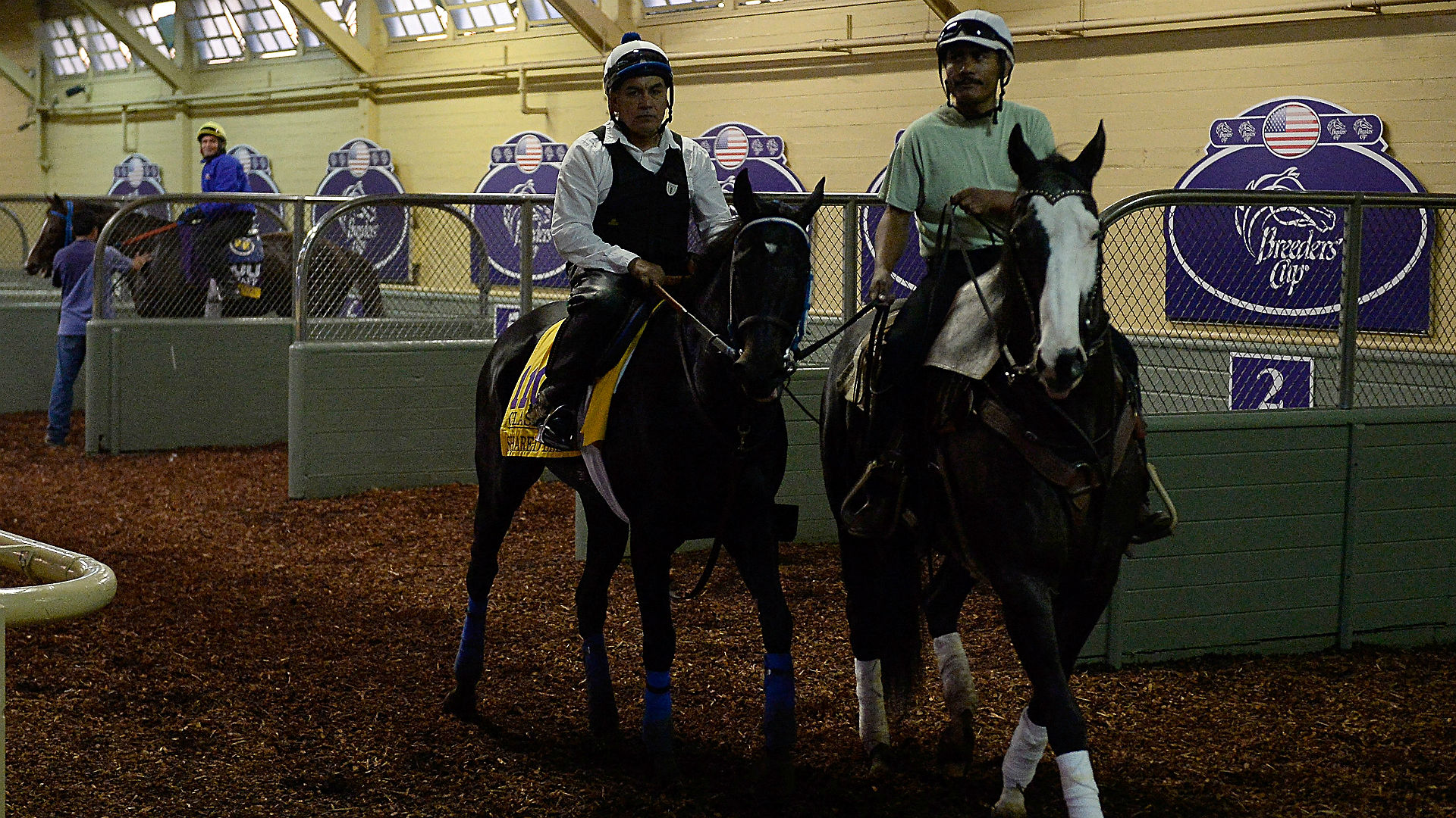 Breeders' Cup Classic preview — Shared Belief leads deep three-year-old group