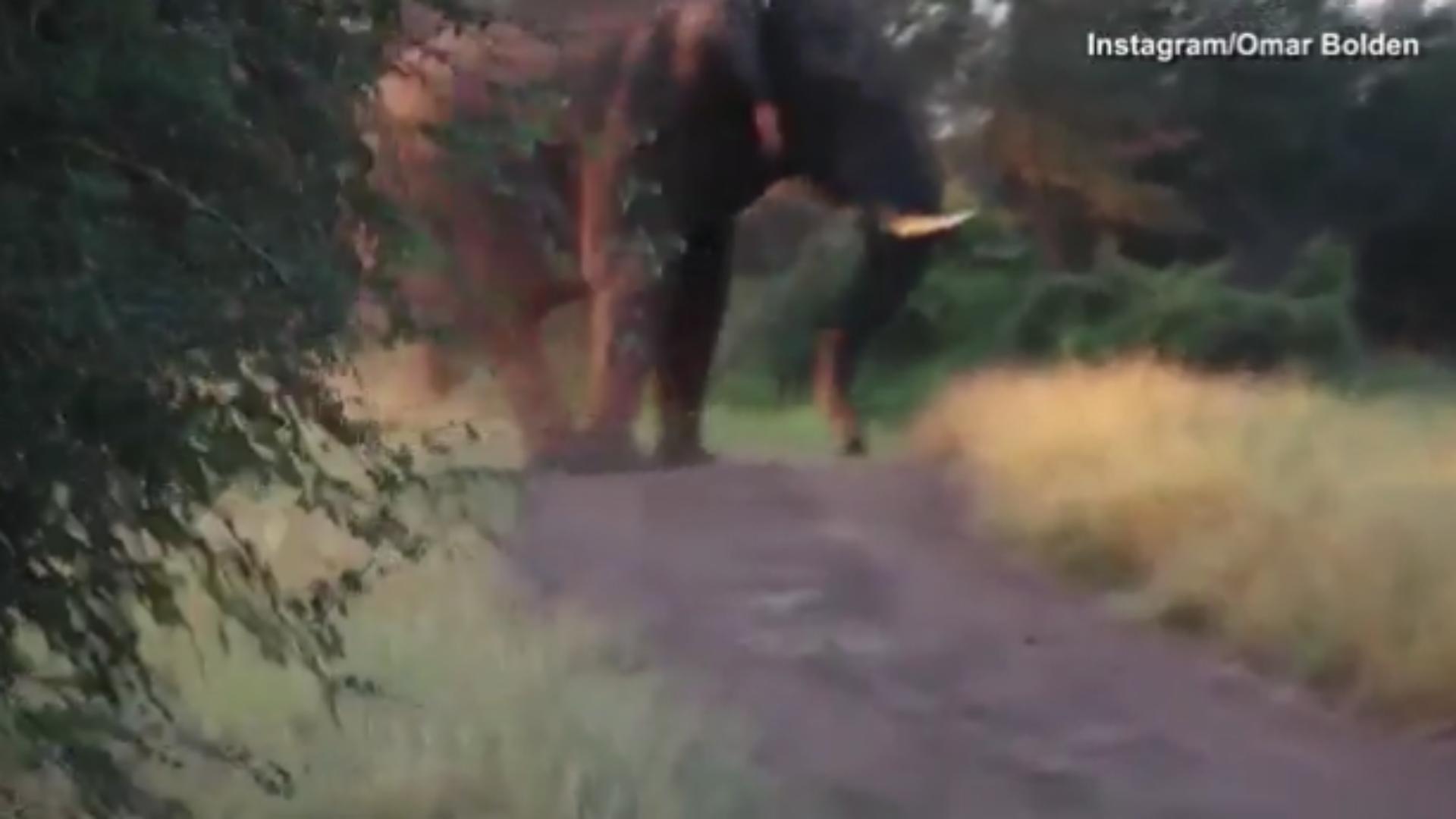 Elephant-ftrpng_byndu00gtpfw1xbykimigacnt