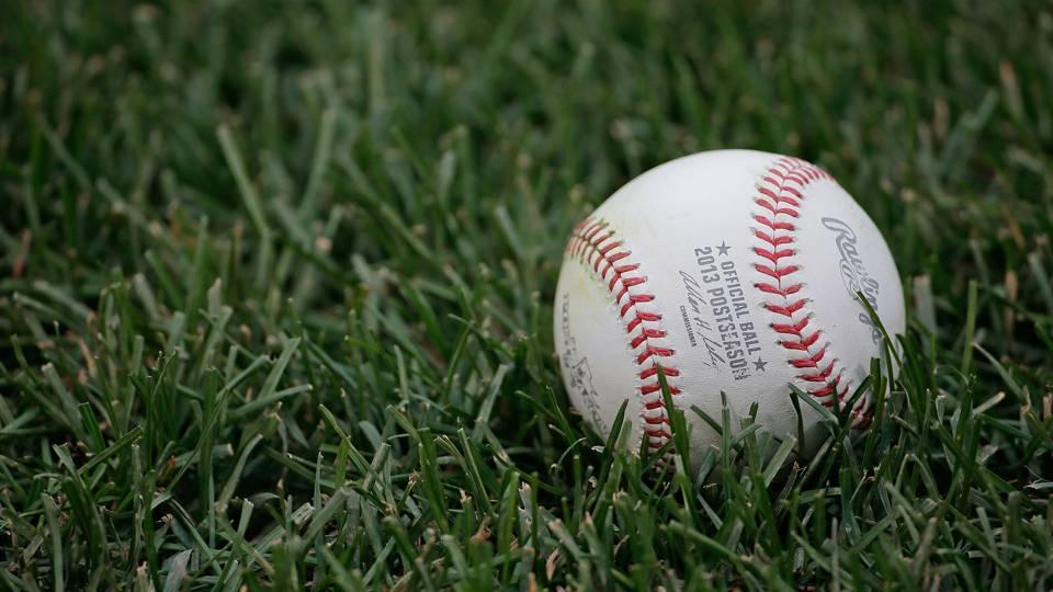 Baseball-011614-AP-FTR.jpg