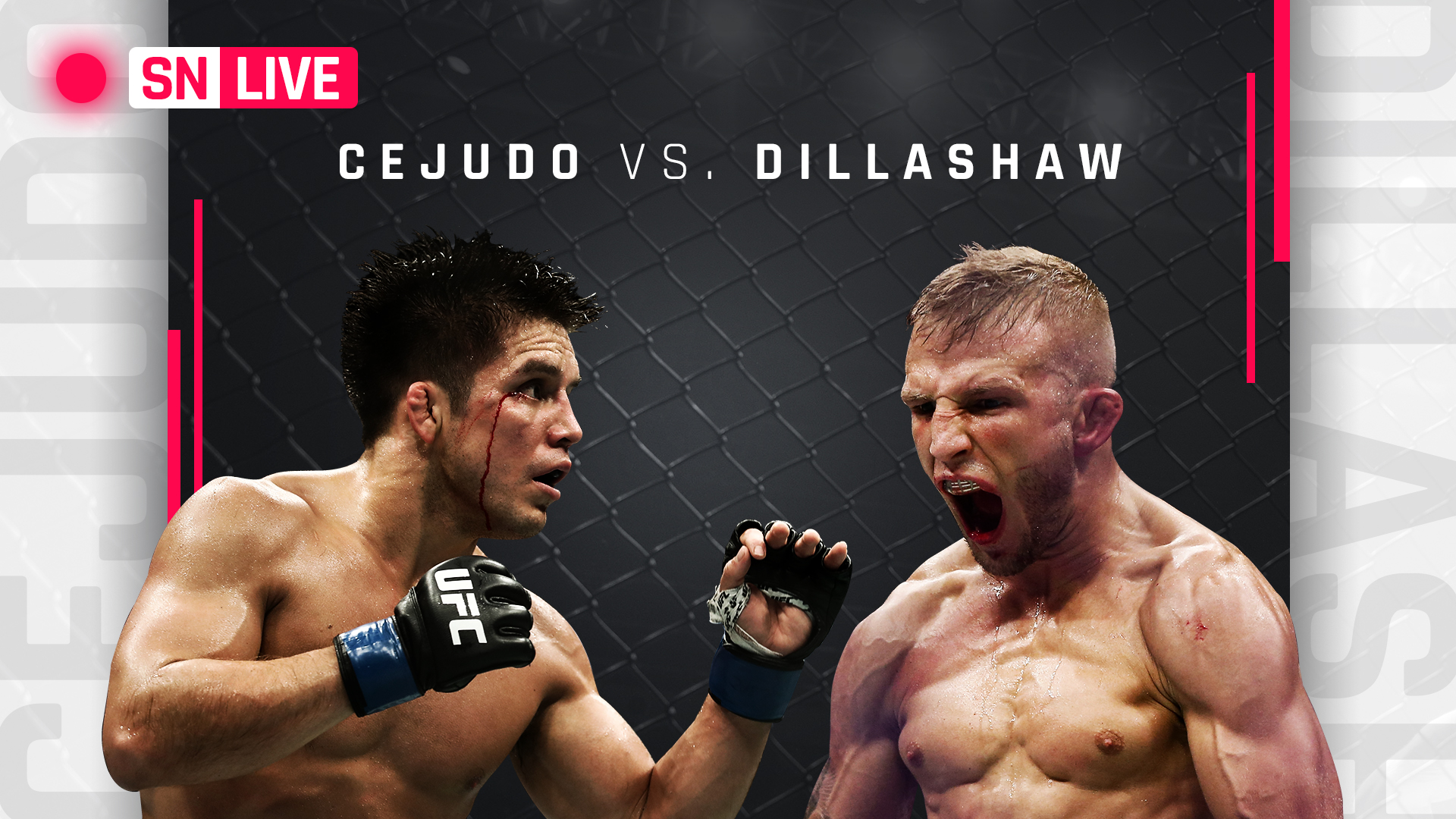 TJ Dillashaw, Henry Cejudo make weight for title bout
