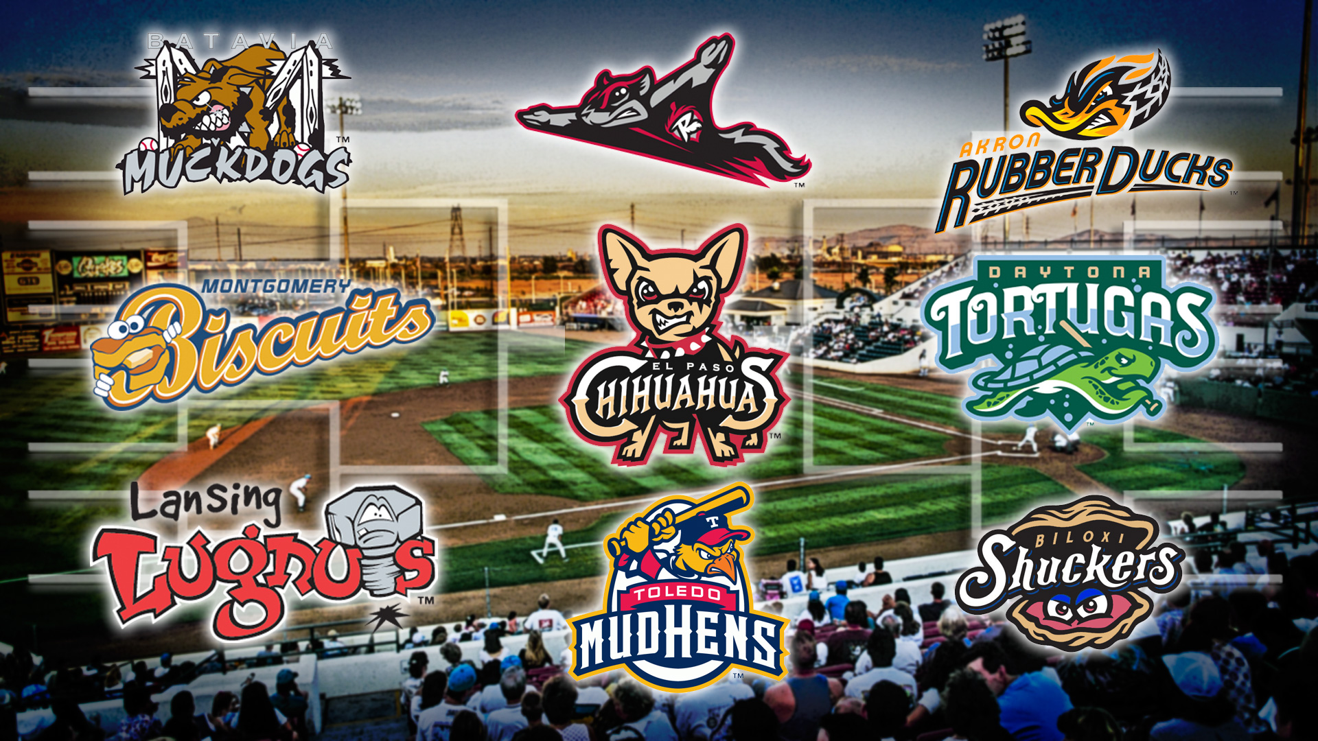 Minor League Baseball's best team name? Vote to decide the ...