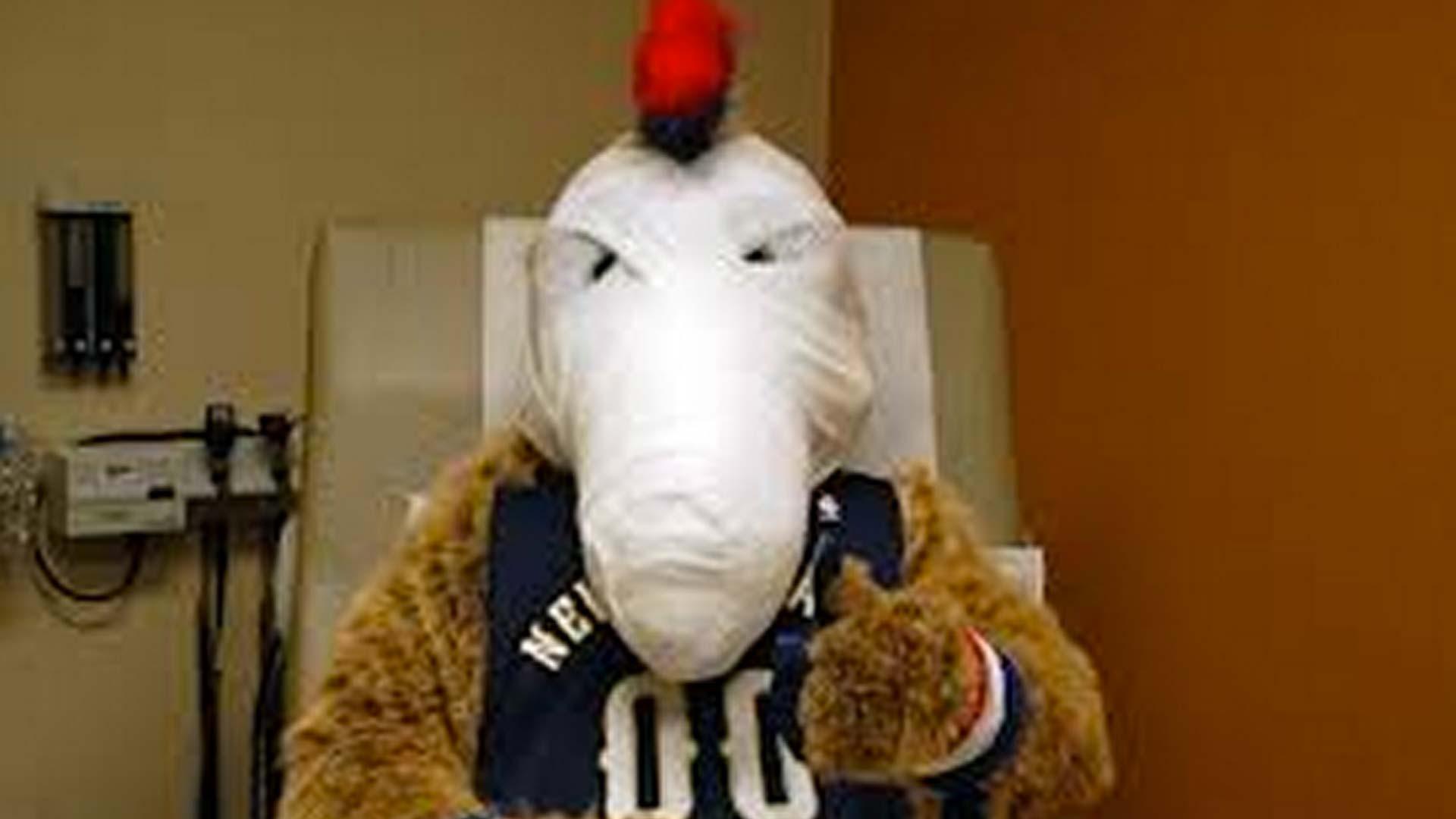 Pierre-pelican-mascot-021214-twitter-ftr
