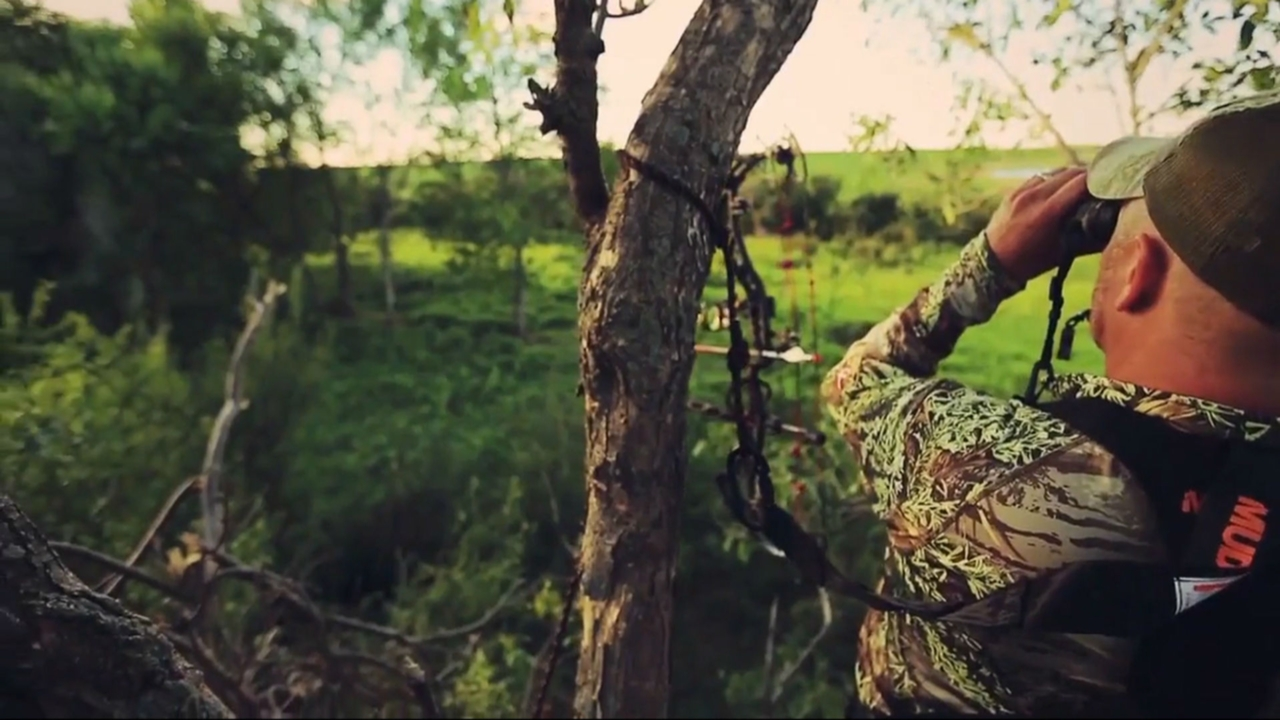 Bowhunting: eight things to do in the offseason | Sporting News