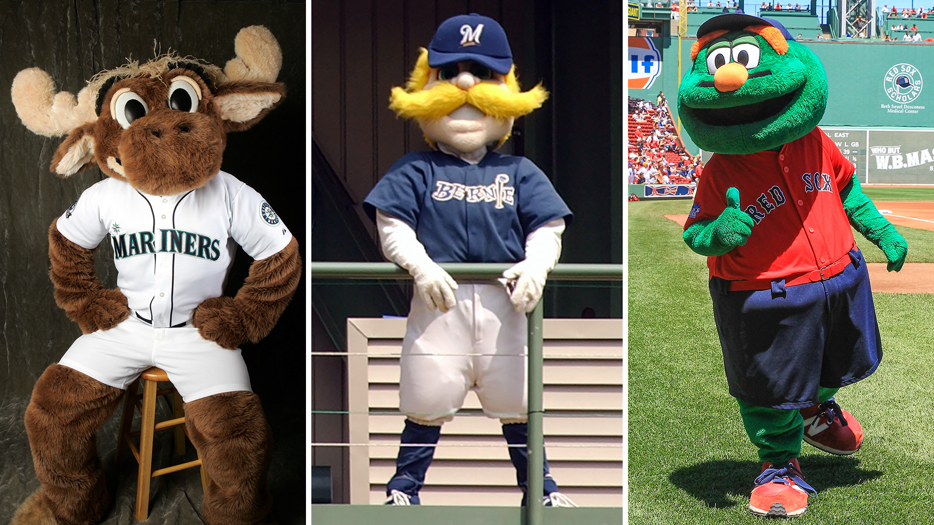 Image detail for -MLB Awareness Channel - How many #MLB mascots ...