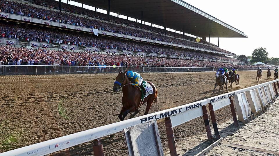 Horse race gambling terms