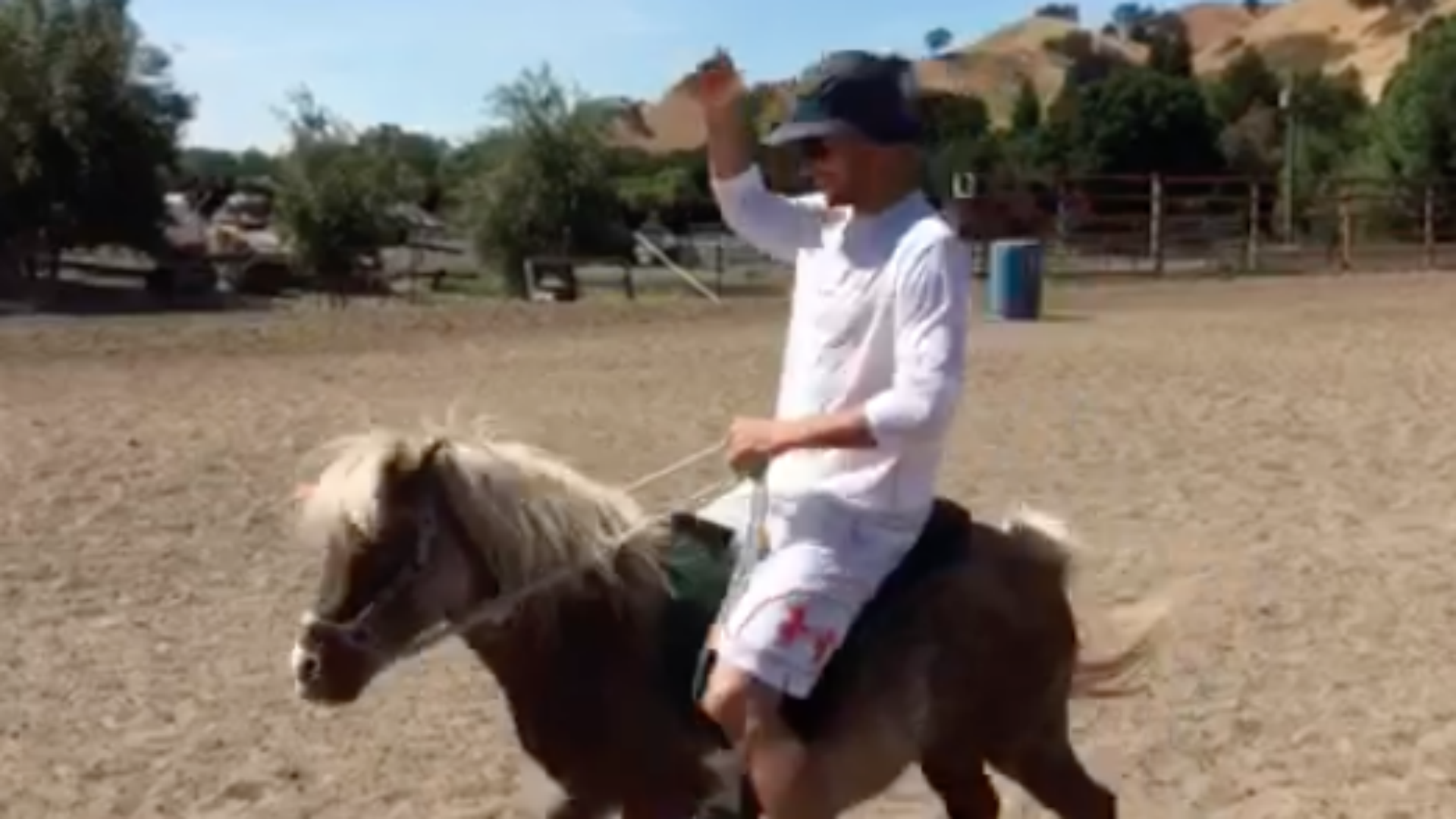 Steph Curry preps for NBA Finals with a mini horse