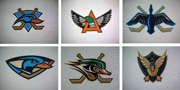 An Inside Look At Ducks Logo Change From 2007 Their Stanley Cup