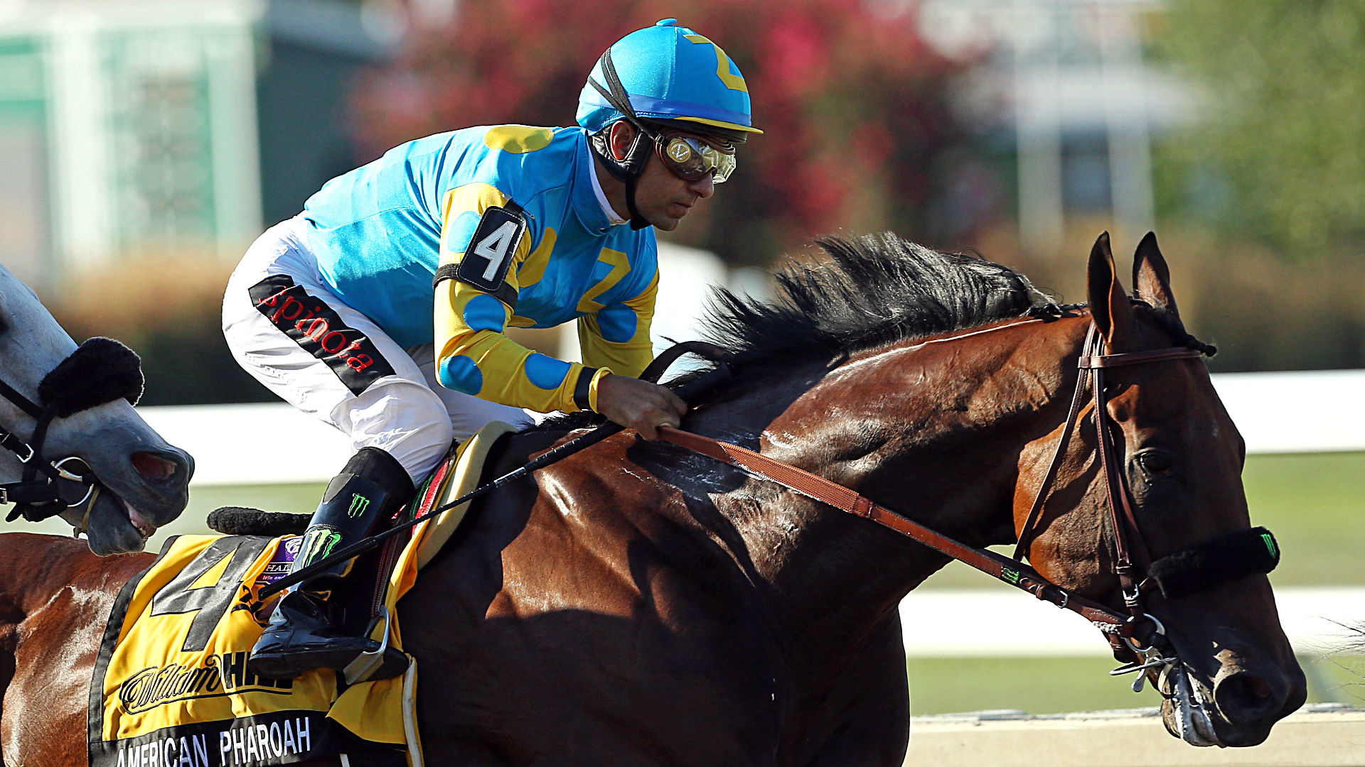 American Pharoah In The Travers Stakes Full Results