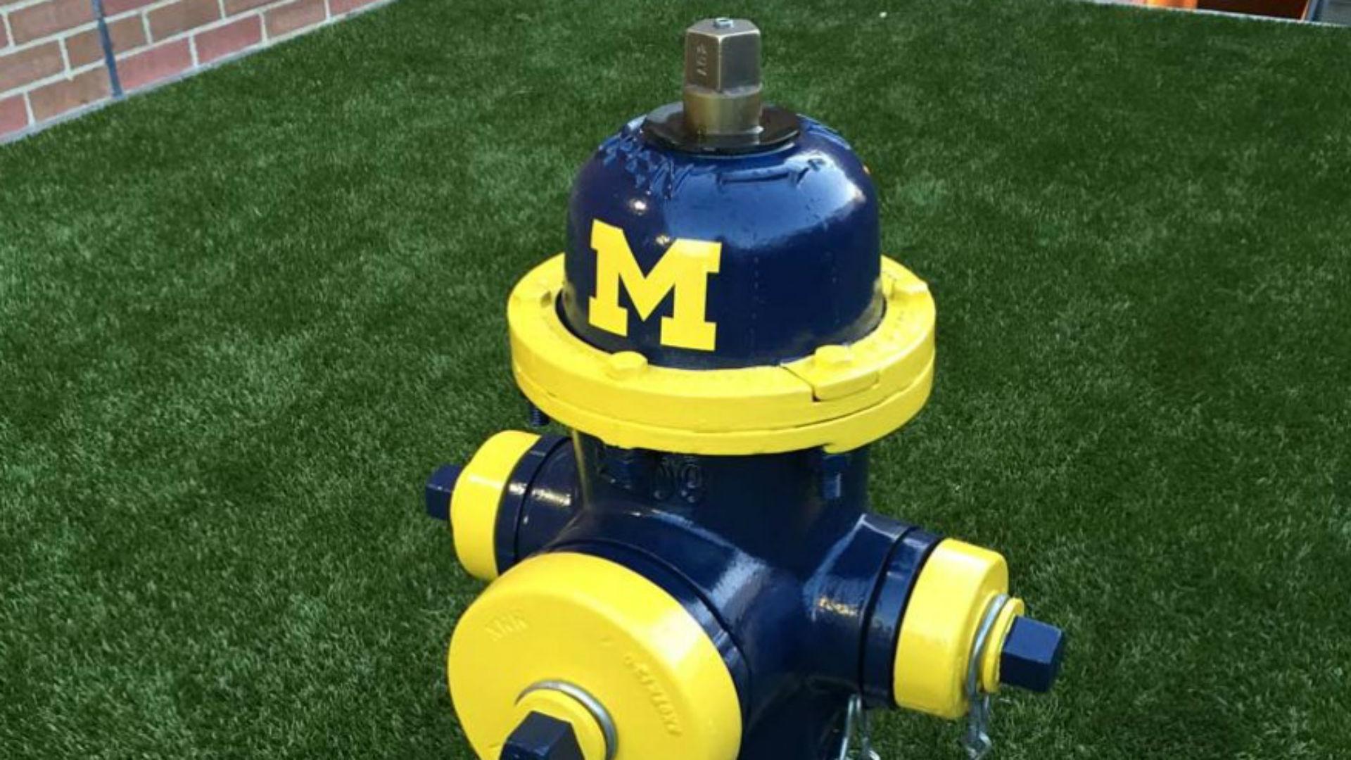 Ohio State's veterinary school has Michigan hydrants