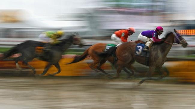 preakness horses died dead death homeboykris Pramedya pimlico track ftr.jpg