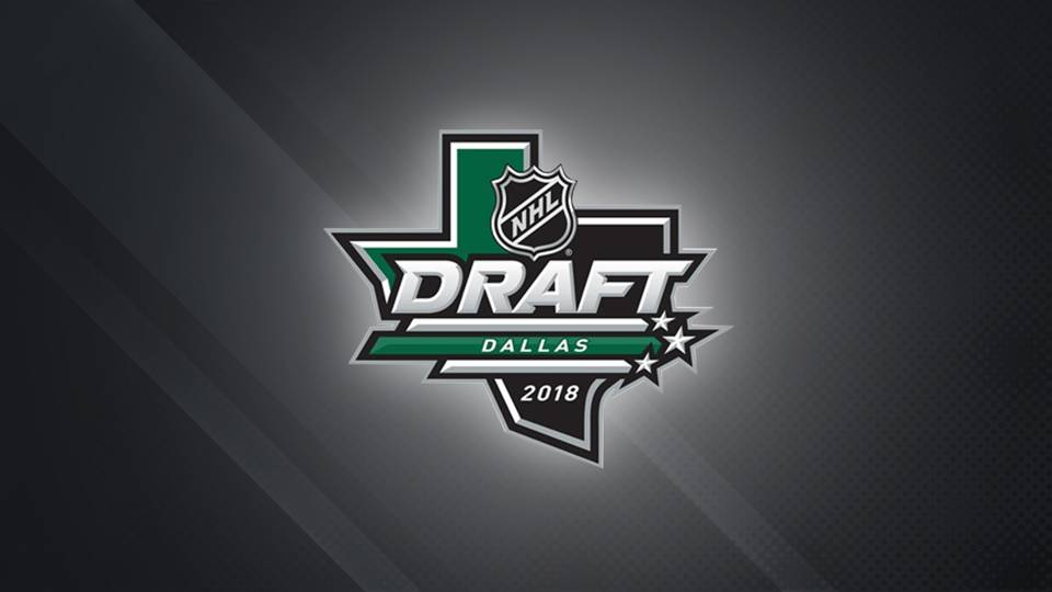 NHL Draft picks 2018  Complete list of results for Rounds 1-7  b3eb30eb9