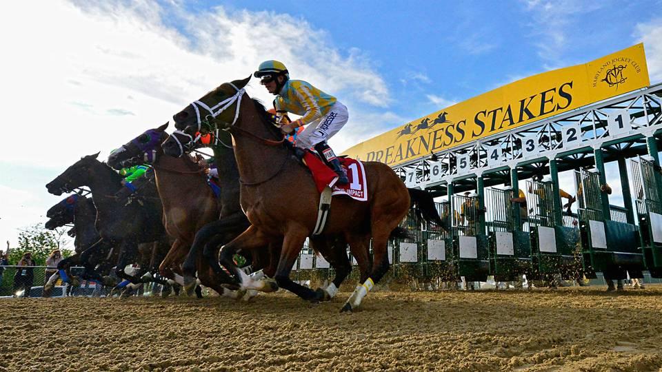 7 11 gambling terms horse racing
