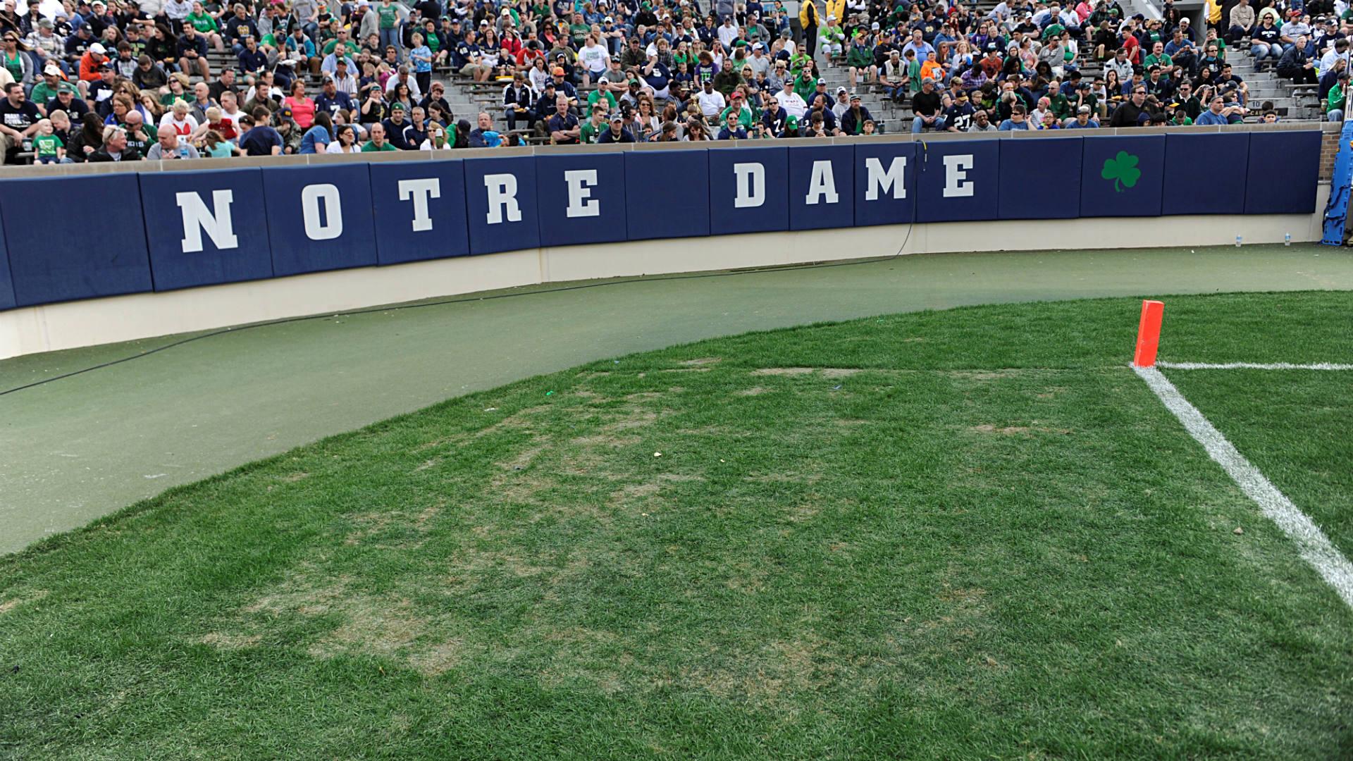 Notre-Dame-grass-FTR-051914-AP